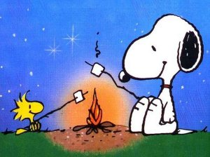 Snoopy_and_Woodstock_camping[1]