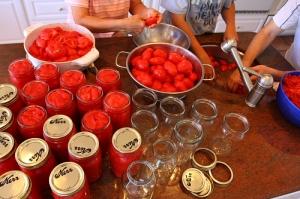 tomato-canning[1]